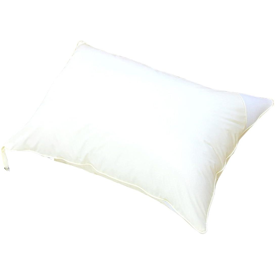 禁止行商人辞書日本製 洗える枕 43×63 インビスタ ダクロン デュラライフ 中綿使用