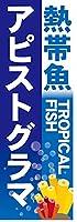 『60cm×180cm(ほつれ防止加工)』お店やイベントに! のぼり のぼり旗 熱帯魚 TROPICAL FISH アピストグラマ(青色)