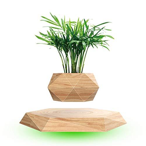 Horypt Schwebender Luft-Bonsai-Topf, Magnetschwebender Pflanzen-Schweben-Blumentopf-Pflanzgefäß, rotierender Aufhängungsblumen-Schwimmtopf für Heim- und Schreibtischdekoration und Geschenke