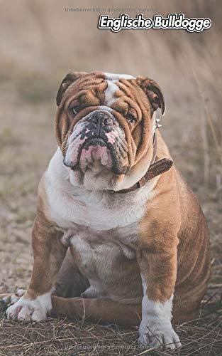Englische Bulldogge: Diskretes Passwort Buch   109 Seiten   Für 432 Einträge   Webseite, Benutzername, Passwort und Notizen   12,7 cm x 20,3 cm ... Security   Organizer   Notizbuch   Hund