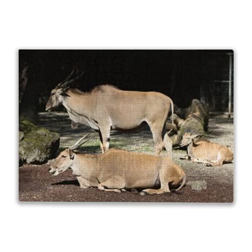rompecabezas,greater kudu gran canaria spain,juegos divertidos,rompecabezas para niños,tablero de rompecabezas,juguetes y juegos300PC