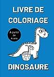 Livre de coloriage dinosaure à partir de 4 ans: 30 images de dinosaures à colorier pour les enfants - Apprendre à colorier sans dépasser - Je colorie sans déborder - enfant - 17,8 x 25.4 cm