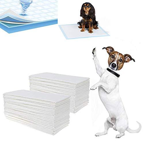 Uotyle Welpenunterlage Hygieneunterlagen für Haustiere 56 × 56 cm 50 Stück Trainingsunterlagen Für Welpen|Super Saugfähig Training Pads|Hund Pads