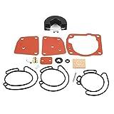 BLTR Kit de reparación de carburador, 16pcs / Set Kit de reparación carburador for Johnson EVINRUDE V4 / V6 / 90/115/125/150 / 175HP 1300-08.689 De Confianza