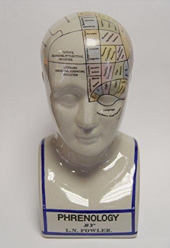 Decoratie Deko Kopf Kopfskulptur Büste Phrenologie Schädellehre Porzellan Höhe 30 cm 1,7 kg farbig