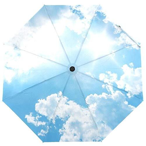 BDWS Regenschirm Einzigartiger Sonnenschirm DREI klappbarer Kazbrella-Regenschirm winddichter Regen weiblicher automatischer offener und geschlossener personalisierter Regenschirm China
