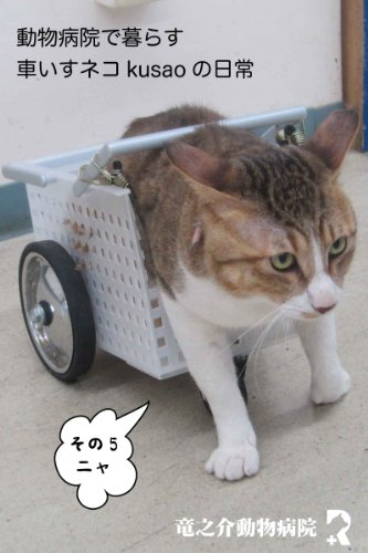 Every day of the wheelchair cat kusao which lives in an animal hospital5 kusao blog (Japanese Edition)