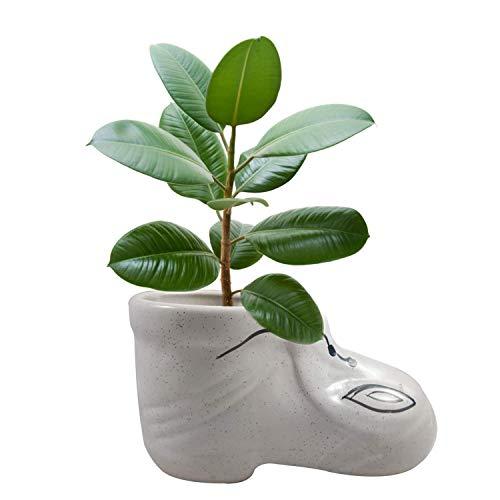 Flower Vase shoe shape ceramic Handmade Designer Vases | Pot | Planter | Home Décor | Khurja Pottery