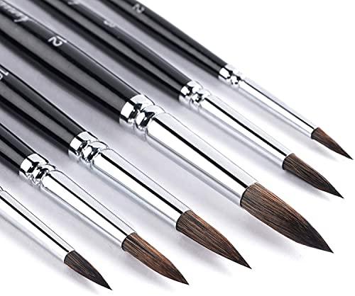 Fuumuui Pennelli per acquerelli in Pelo di Scoiattolo, 6 Pezzi da Dettagli tondi a pennelli per Pittura Spessa capacità di trattenere l'acqua Elevata Perfetto per la Pittura a guazzo