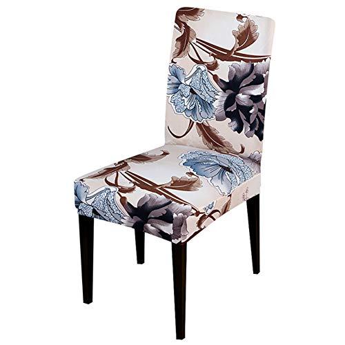 TAYINIO Bedrukte bloemen stoelhoezen beschermhoezen hoezen hoezen hoezen hoezen hoezen hoezen stoelhoezen hoezen hoezen stoelhoezen hoezen stoelhoezen hoezen stoelhoezen hoezen stoelhoezen hoezen stoelbekleding hoezen stoelbekleding hoezen stoelbekleding beschermhoezen stoelbekleding hoezen stoelbekleding hoezen stoelbekleding hoezen stoelbekleding hoezen stoelbekleding hoezen Stoelhoezen Stoelhoezen Stoelhoezen Beschermhoezen Beschermhoezen Stoelbekleding Beschermhoezen Beschermhoezen Hoes