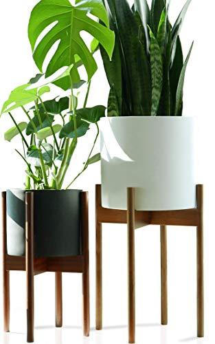 Fox & Fern Tall Plant Stand Acacia -...