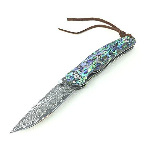 Coltello Damasco Pieghevole Coltello tascabile VG-10 acciaio,16,5 cm in confezione regalo, Manico in abalone