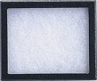 Frey Scientific Riker Mount with Glass Window, 16