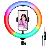 YUNLEJP 10.2inch Marquee Dual-Color Temperature Dimming LED Ring Fill Light with Remote Control and Mobile Phone Holder