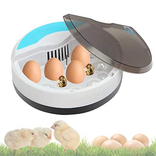 EFGS Máquina de Eclosión, Incubadora Huevos Semiautomática con Conducto Aire Circulante, Panel Táctil Inteligente, Función Control Temperatura para Pollos, Patos, Codornices