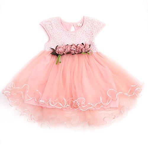 WangsCanis Vestido de bautizo para niña, con tul y encaje, elegante, de manga corta, vestido de princesa, para fiestas, ceremonias, cumpleaños, 0 – 3 años Rosa 12-18 Meses