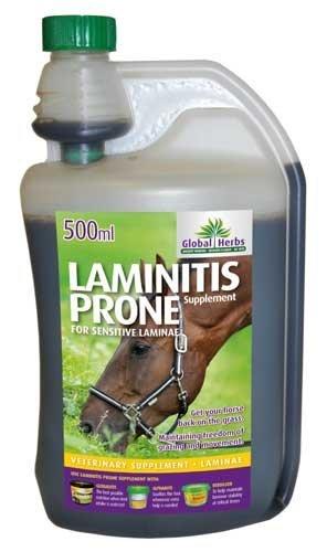 Global Herbs Laminitis Prone Supplement 500ml - for Sensitive Laminae by