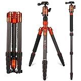 Fotopro X-go-Or trepied Professionnel pour caméra,Fibre de Carbone Portable trépied,53.5 Pouces trépied pour Appareil Photo et DSLR Canon Nikon Sony, Capacité Max: 8 kg, Orange