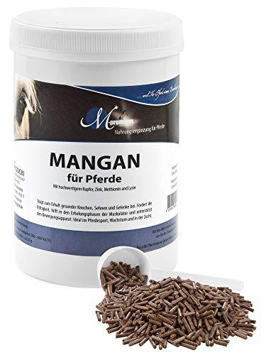 MIGOCKI Mangan – 750 g – Ergänzungsfuttermittel für Pferde Premiumqualität – Fördert die Rittigkeit und unterstützt die Erholungsphasen der Muskulatur und des Bewegungsapparates – Pellets