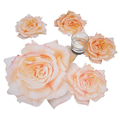 Rosemarie Schulz® 6 Tischsets rund Rose Maria Stuart Platzset Motiv Blume + 6 Glasuntersetzer