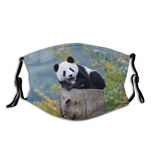 Máscara facial de Panda verde a prueba de polvo transpirable reutilizable bufanda lavable bandana-animales de bebé Panda osos