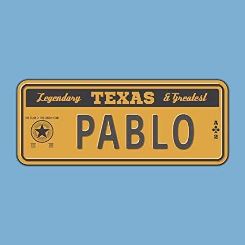 Megadecor Placa de Matrícula Decorativa de Aluminio o PVC Impreso de Estilo Vintage Americano Personalizado con Nombre 100% Personalizable 8 Modelos (Texas, PVC 5 mm)