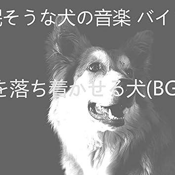 心を落ち着かせる犬(BGM)