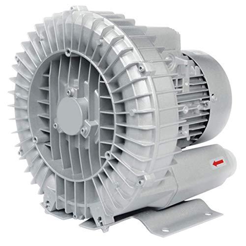 Inicio Accesorios Soplador Wmarking UK Ventilador de vórtice de alta presión que sopla y aspira todo el motor de cobre 2 consumo de energía carcasa de aluminio centrífuga silenciosa industrial al a