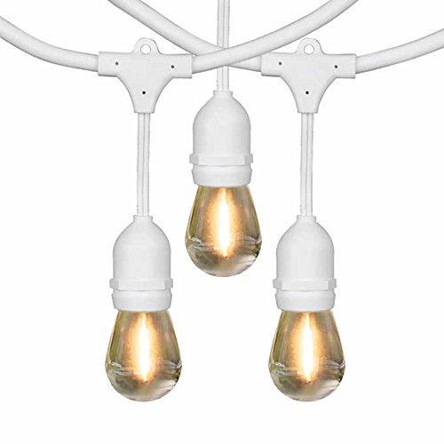 Feit Electric 48' LED Filament String Light Set