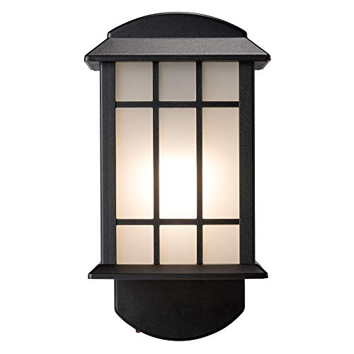 Craftsman Companion Black Outdoor Smart Security Light