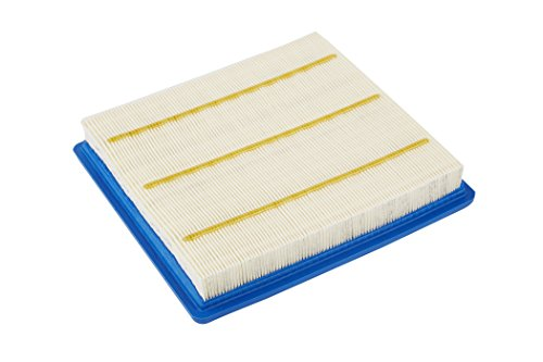 ACDelco A3195C Professional Air Filter