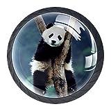 pomos de cristal, de alta calidad Panda árbol animal para puertas de armarios de cocina, tiradores para armarios, cajones, transparentes, 4 unidades Bianco negro 35mm