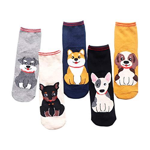 planuuik 5 paar Womens Funny Sokjes Cute Cartoon Sitting Puppy Dog Panty Panty Panty Panty Panty Panty Panty Panty Panty Panty Panty Panty Panty