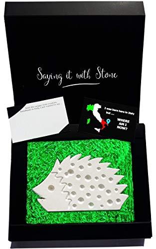Igel aus Stein - Symbol für Einzigartigkeit, Lebensfreude, Einfallsreichtum, Schutz und Intelligenz - Box und Nachrichtenkarte enthalten - Handmade in Italy - Vatertag Geschenkidee