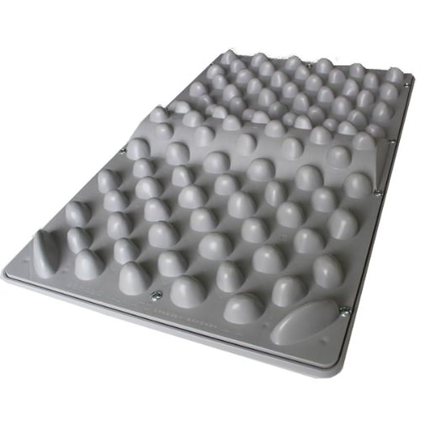 同志理解する宿官足法 ウォークマットⅡ 裏板セット(ABS樹脂製補強板付き)