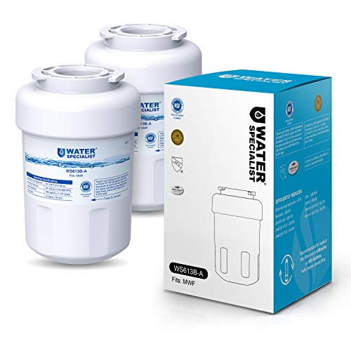 Waterspecialist NSF 53&42 Certified MWF Refrigerator Water Filter, Replacement for GE SmartWater MWFP , MWFA, GWF, HDX FMG-1, WFC1201, GSE25GSHECSS, PC75009, RWF1060, 197D6321P006 (Pack of 2)