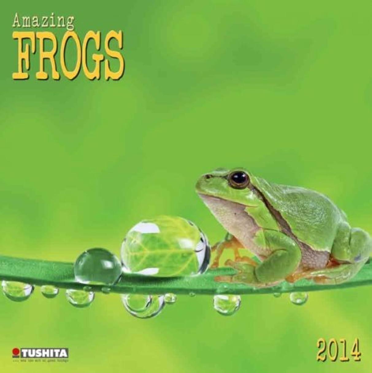 不名誉よく話される検査官Amazing Frogs 2014 (What a Wonderful World)