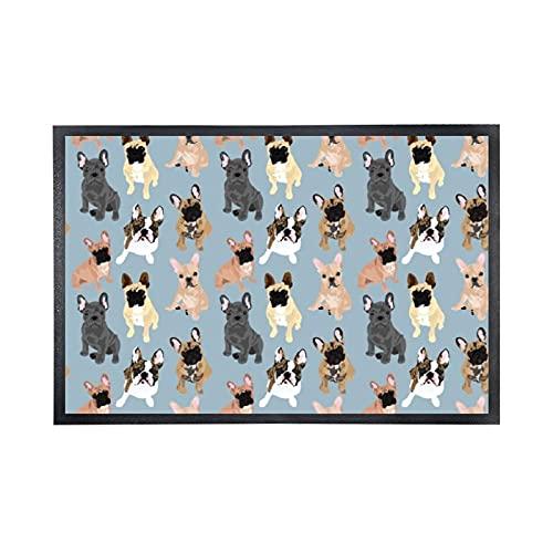 MGVDSES Entrance Floor Mat Rug Welcome Doormat French Bulldog Door Mats (25 X 15 in) Absorbent Non-Woven Fabric Top with a Non Slip Rubber Back Door Rugs Washable Doormat