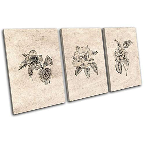 3 Pieces Wall Art Picture 3 Panel Non-Woven Canvas Prints Image Framed Artwork Painting Picture Photo Home Decor 3 Pieces Botanical Vintage House Plant Floral Creative Gift 50X70Cmx3 Size 150X70Cm