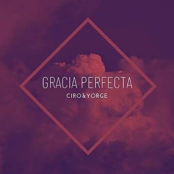 Gracia Perfecta