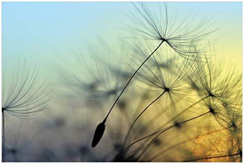 Wallario Glasbild Samen der Pusteblume in Nahaufnahme vor blauem Himmel - 60 x 90 cm in Premium-Qualität: Brillante Farben, freischwebende Optik