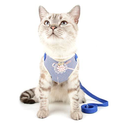 Ranphy - Juego de arns y correa para gato a prueba de escapes para caminar, no tirar, chaleco para gato, arns ajustable para nia, cachorro, caminar, chaqueta de malla suave, disfraz de moda