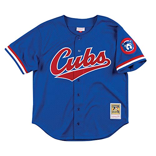 Mitchell & Ness Ryne Sandberg Chicago Cubs Men's Authentic 1996 BP Jersey (X-Large)