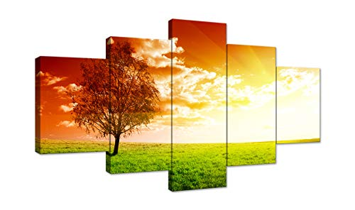 AMEMNY 5 Panel Red Tree Art Scenery Landscape Wall Art Painting Canvas Scenery Sunset Landscape Flower Picture Wall Decor for Living Room Bedroom Bathroom Stretched and Framed Ready to Hang