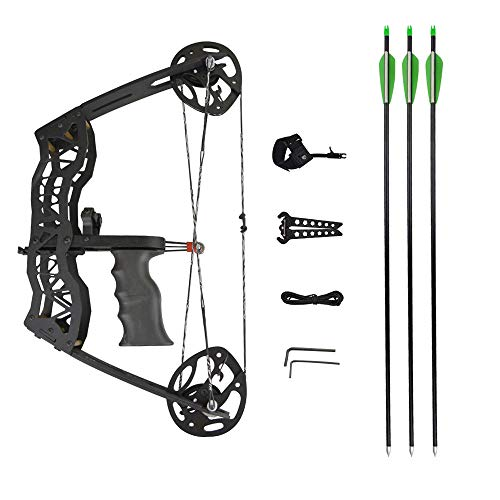 MILAEM Archery Compound Bow and Arrow Kits 35 Lbs Mini Compound Bow Right and Left Hand Bow for Outdoor Hunting Shooting (Type 2)