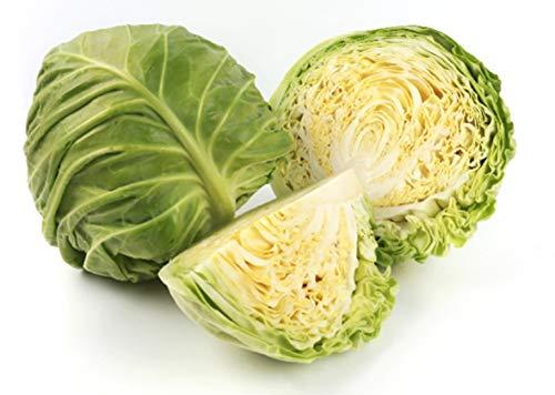 韓国産キャベツ たま菜小町10kg(1玉1kg×10個入)