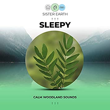 ! ! ! Calm Sleepy Woodland Sounds ! ! !