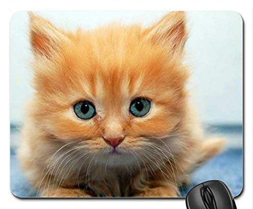 (AugenMausunterlage) Spiel Mauspad mousemat Blaue Augen Kätzchen Mausunterlage, Mousepad