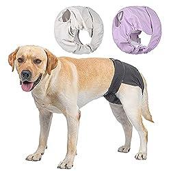 BePetMia Waschbare Windeln für Hunde (Beige+Schwarz+Lila), Hygiene-Unterhose für Hunde in Hitze, 5 Größen XS bis XL, geeignet für alle Hunde (XL: 60-82cm, 3-Packs)