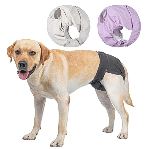 BePetMia Waschbare Windeln für Hunde (Beige+Schwarz+Lila), Hygiene-Unterhose für Hunde in Hitze, 5 Größen XS bis XL, geeignet für alle Hunde (L: 48-65cm, 3-Packs)